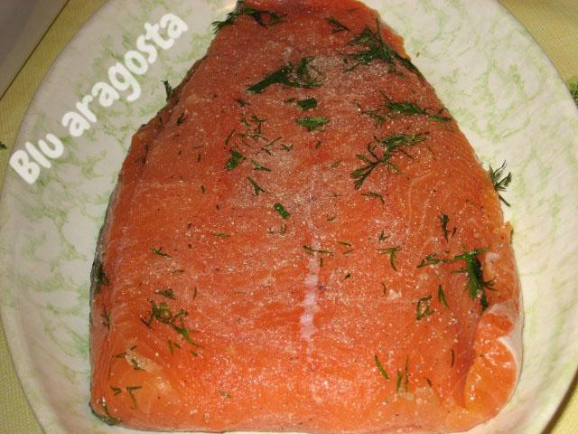 salmone gravad lax
