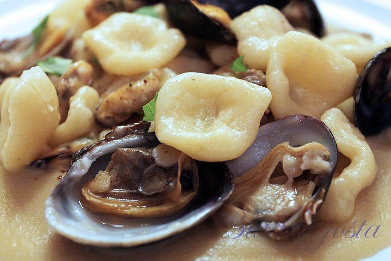 Orecchiette con cozze e vongole su crema di fave secche